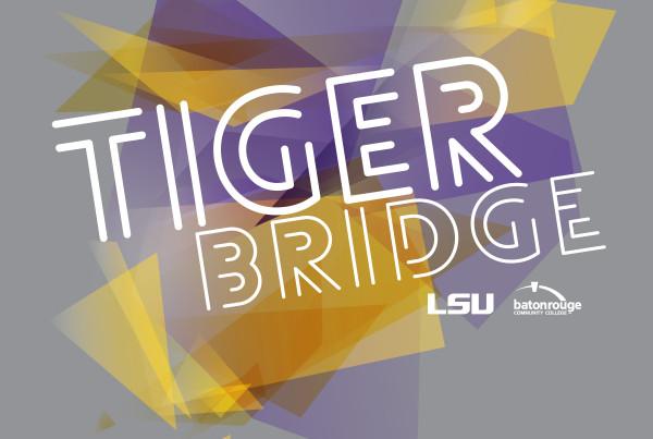 Promo-TigerBridge-Art-RGB-01